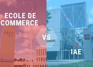 Ecole_de_commerce_VS_IAE